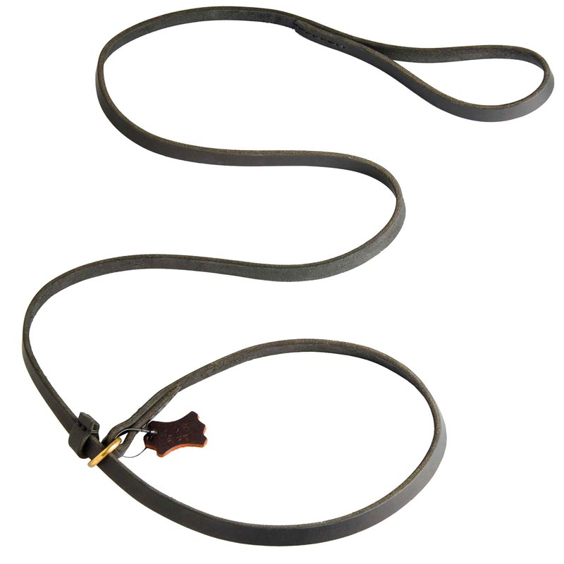 Best Choke Leather Dog Collar and Leash