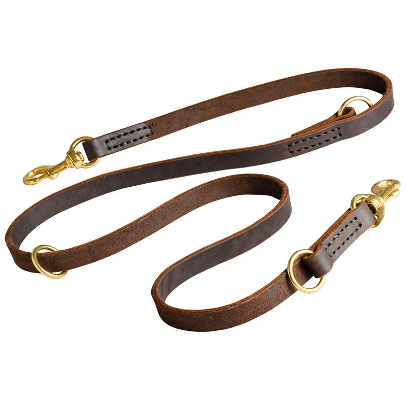 Leather Leash for Dog Everyday Walking