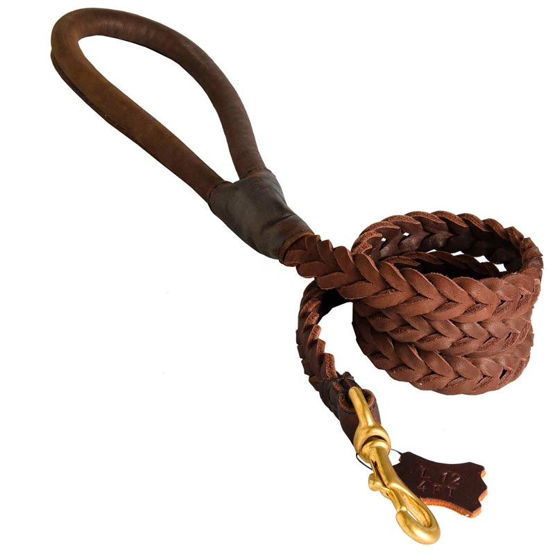 Multipurpose Leather Braided Dog Leash