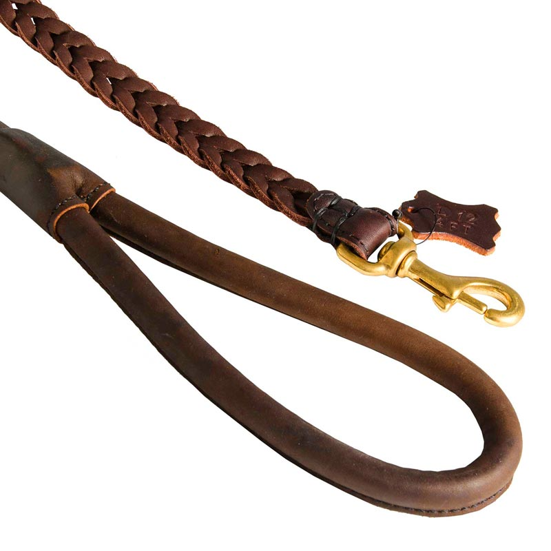 Braided Leather Dog Leash with Brass Snap Hook