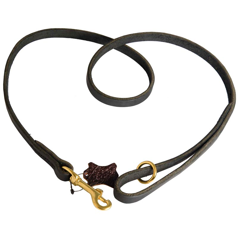 Strong Leather Dog Leash Designer for Dog Walking