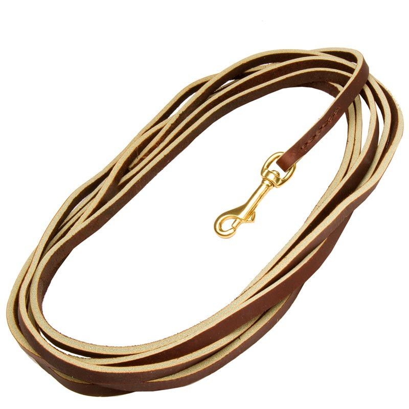Brown Leather Dog Leash with Strong Brass Snap Hook