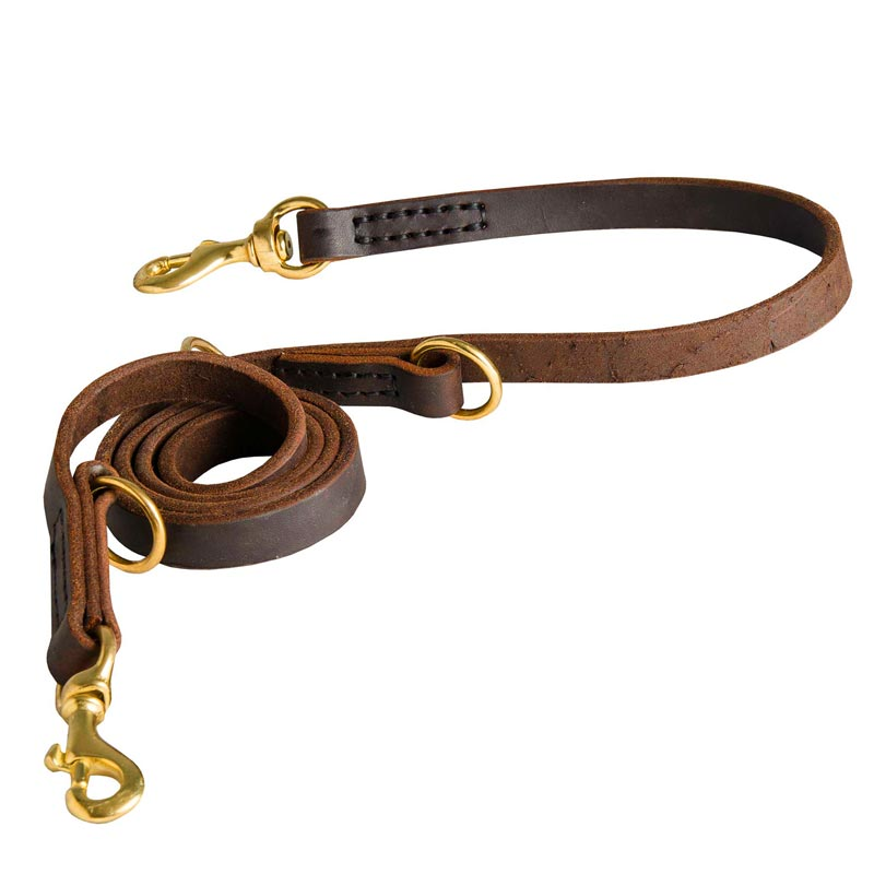 Strong Leather Leash for Dog Successful Training
