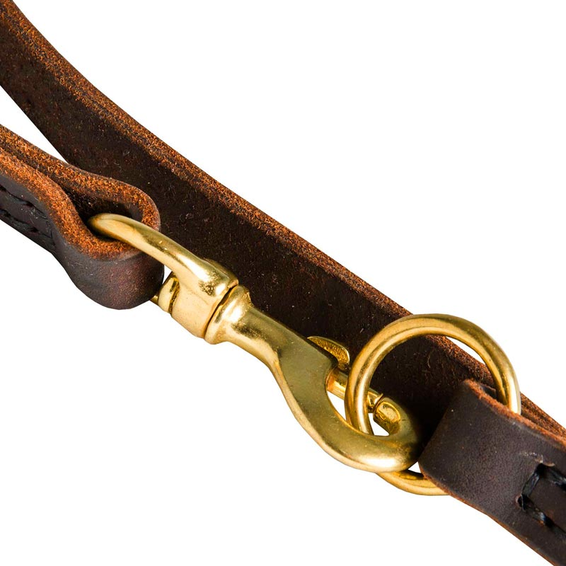 Dog Leather Leash with Brass Snap Hook and O-ring