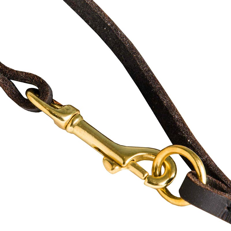 Leather Dog Leash with Brass Hardware for Dog Control