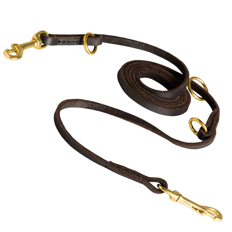 Multipurpose Dog Leather Leash for Effective Training