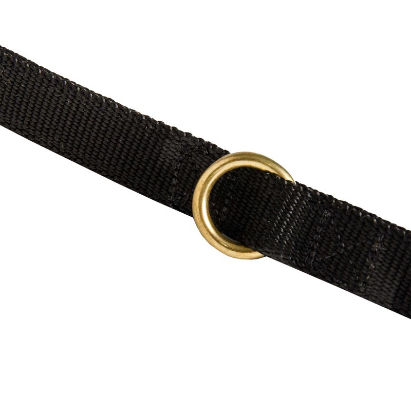 Nylon Dog Leash Solid Brass Ring