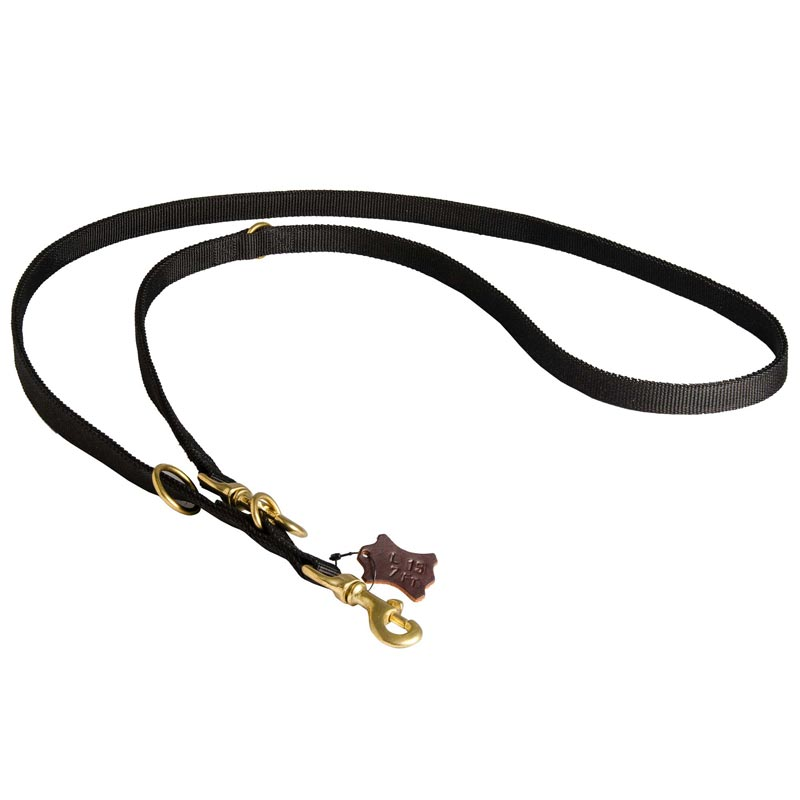 Dog Nylon Dog Leash