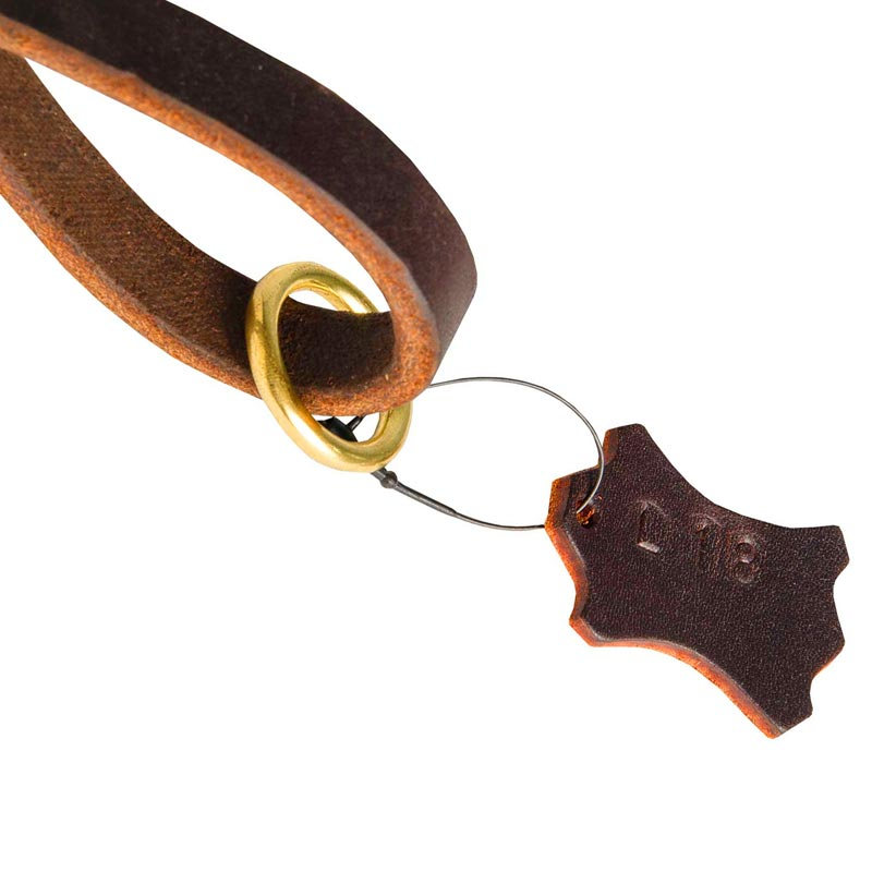 Leather Dog Leash with Brass-Made O-Ring