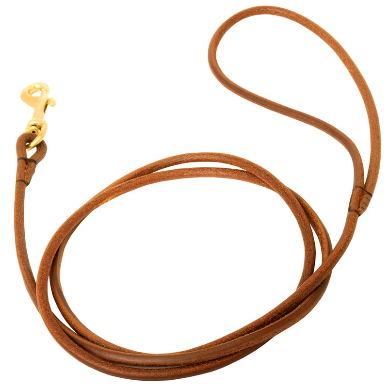 Leather Round Leash for Dog Elegant Look