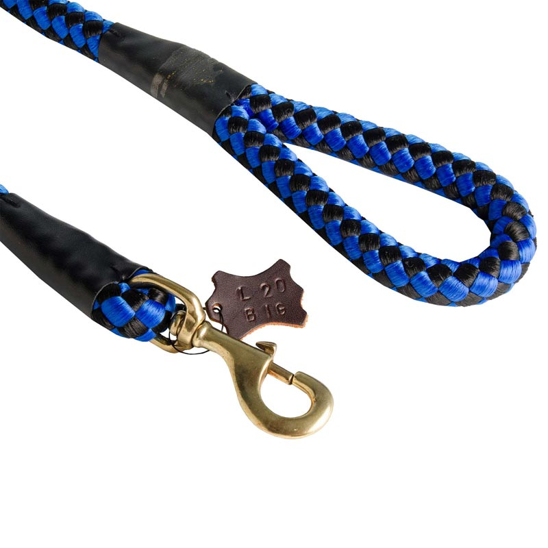 Blue Nylon Dog Leash