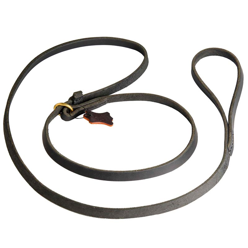 Leash and Collar Combo for Dog Walking and Training